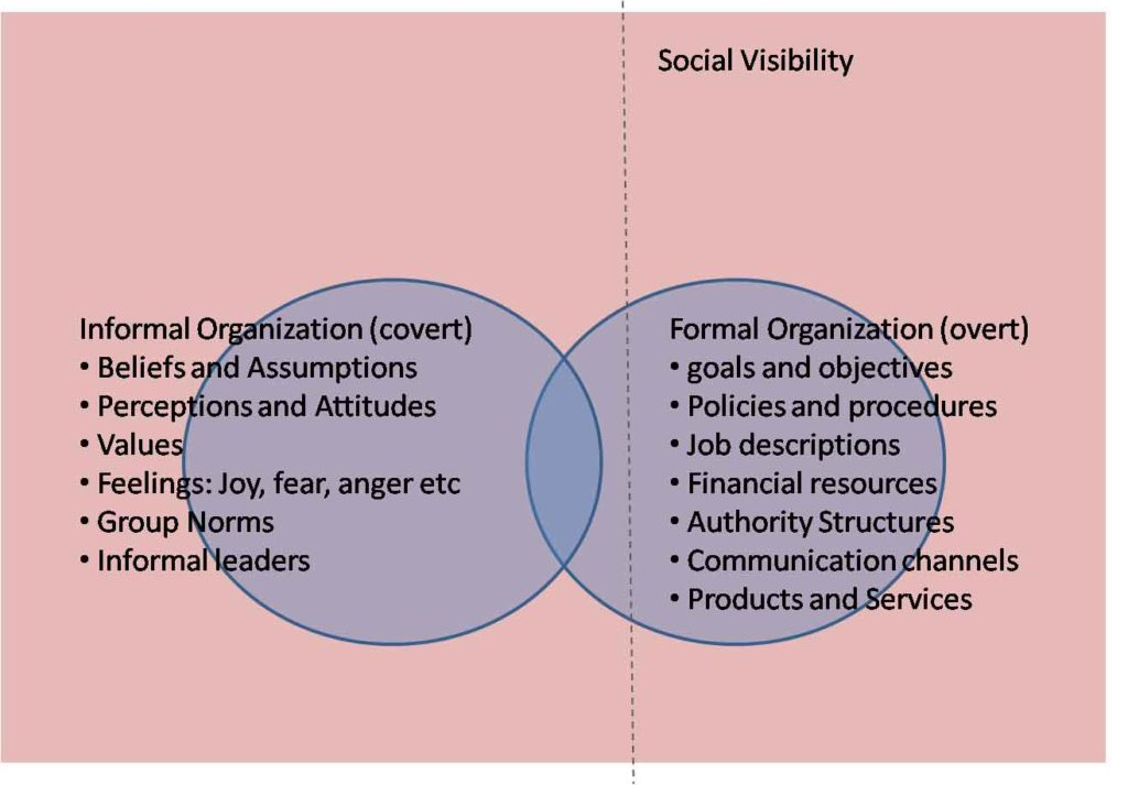 Difference Between Formal and Informal Organization